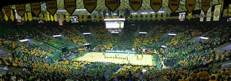 Baylor – Just the Bear Facts